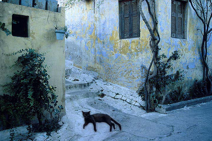 Greece - Athens - Plaka -  by Gene Burch